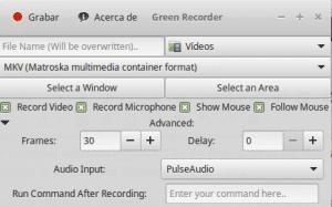 Interfaz Green Recorder
