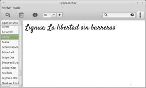 Interfaz TypeCatcher